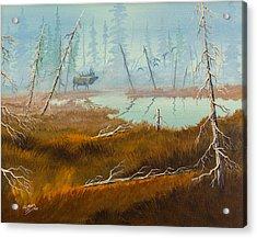 Elk Swamp Acrylic Print