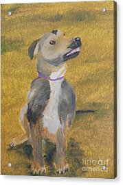 Acrylic Print featuring the painting Ella by Pamela  Meredith