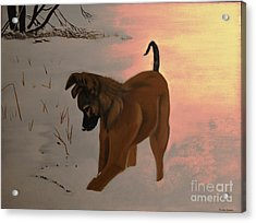Acrylic Print featuring the painting Ellee by Stuart Engel
