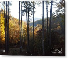 Acrylic Print featuring the painting Ellijay Color by Jan Dappen