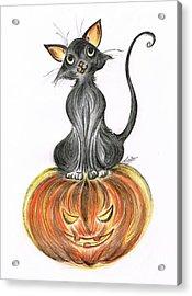 Elma's Pumpkin Acrylic Print