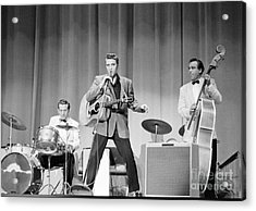 Elvis Presley With D.j. Fontana And Bill Black 1956 Acrylic Print by The Harrington Collection