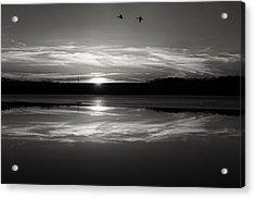 Ember Sunset Acrylic Print by Diana Boyd