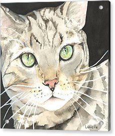 Emerald Eyes Acrylic Print by Kimberly Lavelle