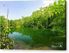 Emerald Pool Acrylic Print by Atiketta Sangasaeng