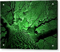 Emerald Snare Acrylic Print by James Hammen