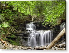 Acrylic Print featuring the photograph Emerald Trees Surround R. B. Ricketts Falls by Gene Walls