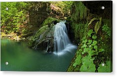 Emerald Waterfall Acrylic Print by Davorin Mance
