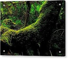 Emily Carr's Backyard Acrylic Print by Mick Logan