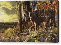 Eminence At The Forest Edge Acrylic Print by Rob Corsetti
