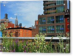 Empire State Building From The High Line Acrylic Print by Diane Lent