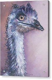 Emu By Jan Matson Acrylic Print by Jan Matson