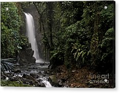 Acrylic Print featuring the photograph Encantada Waterfall Costa Rica by Teresa Zieba