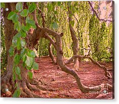 Acrylic Print featuring the photograph Enchanted by Becky Lupe
