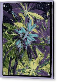 Enchanted Bipeds Acrylic Print
