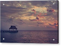 Enchanted Evening Acrylic Print by Laurie Search