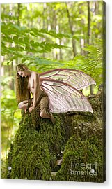 Enchanted Fairy Acrylic Print by Tbone Oliver