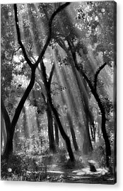 Enchanted Forest ... Acrylic Print