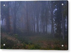 Enchanted Forest Two Acrylic Print