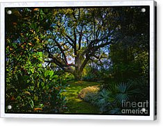 Enchanted Garden Acrylic Print by Rick Bragan