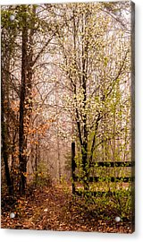 Enchanted Acrylic Print