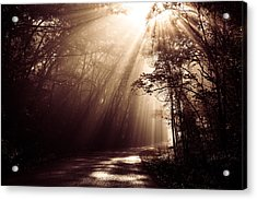Enchanted Light Acrylic Print