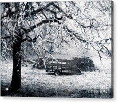 Enchanted Pasture Acrylic Print