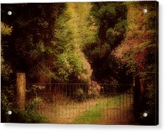 Enchanted Path Acrylic Print