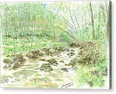 Enchanted Stream - Sketch Acrylic Print