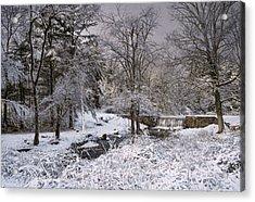 Enchanted Winter Acrylic Print by Robin-lee Vieira