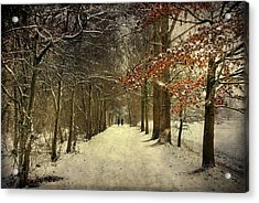 Enchanting Dutch Winter Landscape Acrylic Print