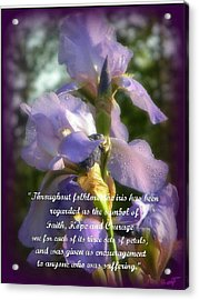 Acrylic Print featuring the photograph Encouraging Iris by Michelle Frizzell-Thompson