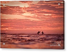 Acrylic Print featuring the photograph End Of A Perfect Day by Paul Topp
