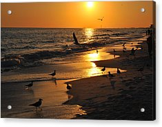 End Of Another Day Acrylic Print by Michele Kaiser