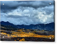 End Of Fall Acrylic Print