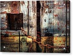 End Of Season Acrylic Print by Martin Dzurjanik