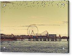 End Of Season Acrylic Print by Nick Barkworth