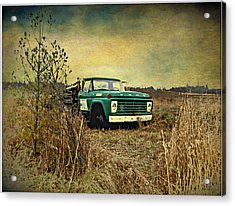 End Of The Ride  Acrylic Print by Dianne  Lacourciere