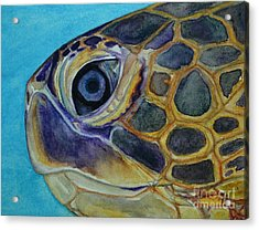 Acrylic Print featuring the painting Eye Of The Honu by Suzette Kallen