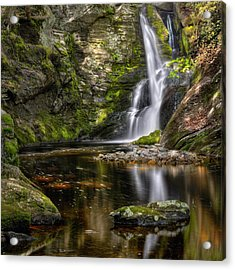 Enders Falls Acrylic Print by Bill Wakeley