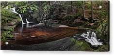 Enders State Forest Panorama Acrylic Print by Bill Wakeley