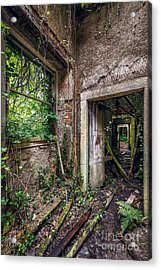 Endless Decay Acrylic Print by Adrian Evans
