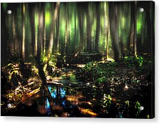 Endless Forest Acrylic Print by Gary Smith