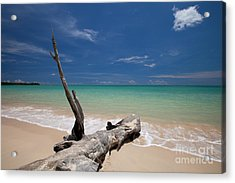 Endless Paradise Acrylic Print by Pete Reynolds