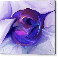 Energing Artist Acrylic Print by David Lane