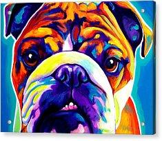 Bulldog - Bond Acrylic Print by Alicia VanNoy Call
