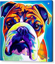 Bulldog - Bond -square Acrylic Print by Alicia VanNoy Call