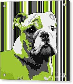 English Bulldog Puppy Abstract Acrylic Print by Natalie Kinnear