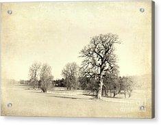 English Countryside Vintage Acrylic Print