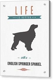 English Springer Spaniel 01 Acrylic Print